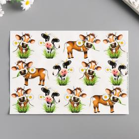 "Decoupage card ""Bulls"" density 45g / m2, A4 format"