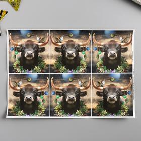 "Decoupage card ""New year's bull"" density 45g / m2, A4 format"