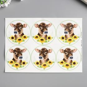 "Decoupage card ""Calf in sunflowers"" density 45g / m2, A4 format"