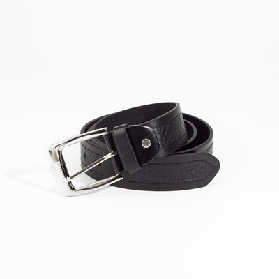 Belt men 07-01-02-01 Alex, 3.6*0.5*110cm, protector, screw, buckle metal, black