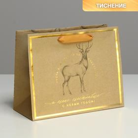 Пакет крафтовый горизонтальный «Волшебных мгновений», MS 23 × 18 × 10 см