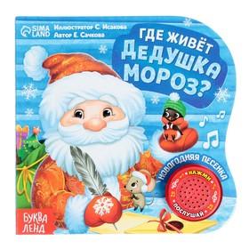 Музыкальная книга «Дом Дедушки Мороза», 10 стр.