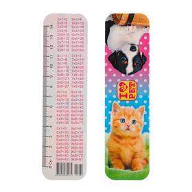 Закладка картонная 'Щенок с котенком-3' глиттер Ош