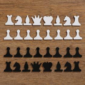 Набор магнитных фигур для демонстрационных шахмат