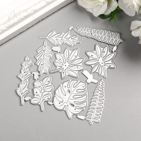 """Knife for cutting steel """"Palm leaves"""" set of 9 elements 9, 8x9, 2 cm"""