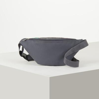 7983 P-600 / D waist Bag, 25*6*13, zippered otd, belt length, grey/m.flower
