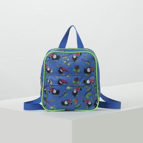 4921 D children's Backpack, 22*6*23, zippered otd, n / a pocket, blue birds