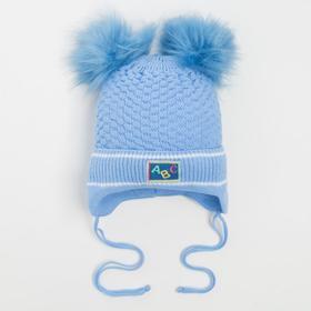 Шапка детская, цвет голубой, размер 46-48 (12-18 мес.)