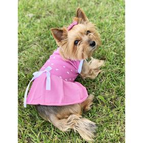 Платье Osso для собак «Маленькая кокетка», размер 25 (ДС 24-26 см), розовое