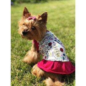Платье Osso для собак «Красотка», размер 22 (ДС 21-23 см), расцветка природа