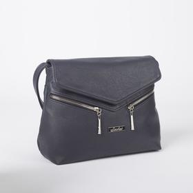 Сумка-мессенджер, отдел на молнии, 2 наружных кармана, цвет синий