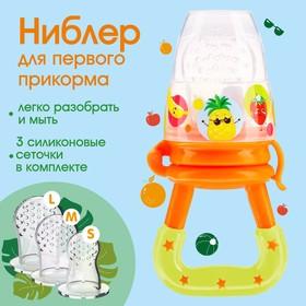Соска для прикорма «Фруктики» в наборе с силиконовыми сеточками 2шт