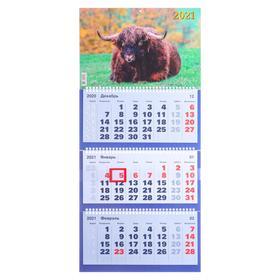 "Calendars quarterly trio ""Symbol of the year, 2021 - 28"" 31 x 69 cm"