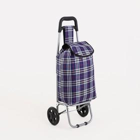 Сумка хозяйственная на тележке, отдел на шнуре, нагрузка 30 кг, колёса ПВХ, цвет разноцветный