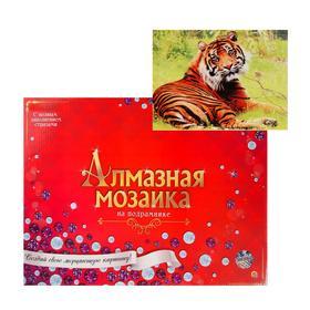 Алмазная мозаика 30х40 см, с подрамником, с полным заполнением «Спокойный тигр на траве»