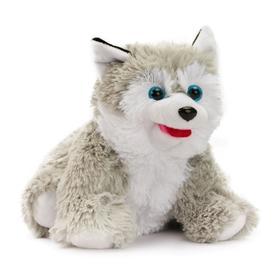 Мягкая игрушка «Собака Хаски», 20 см