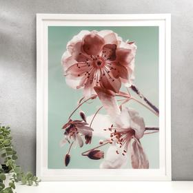 "Poster plastic ""Sakura"" 40x50 cm"