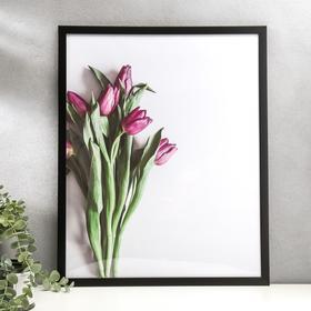 """Poster plastic """"Purple Tulip"""" 40x50 cm"""