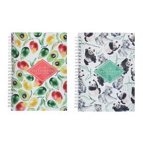 Блокнот-скетчбук А5+, 60 листов на гребне «Акварельные Истории», твёрдая обложка, матовая ламинация, блок офсет 100 г/м2