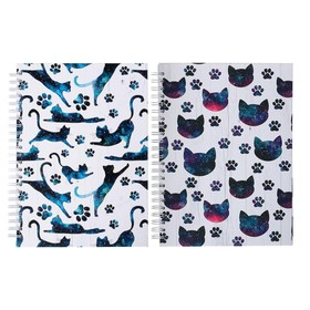 Блокнот-скетчбук А5+, 60 листов на гребне «Космические Коты», твёрдая обложка, матовая ламинация, блок офсет 100 г/м2