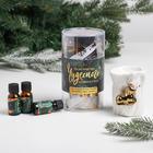 Подарочный набор «Невероятно чудесного Нового года», аромалампа, аромамасло 3 шт - фото 504747