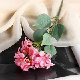 Цветы искусственные 'Цветки Сакуры' 3,5х43 см, розовый Ош