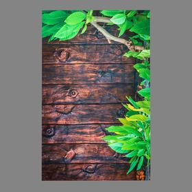 """Photophone vinyl """"Green wood and brown boards"""" 80x125 cm"""