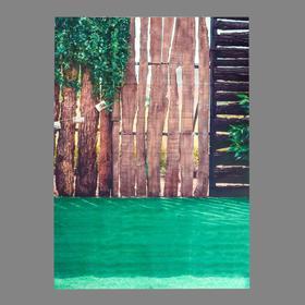 "Photophone vinyl ""Hedge with bindweed"" 150x210 cm"