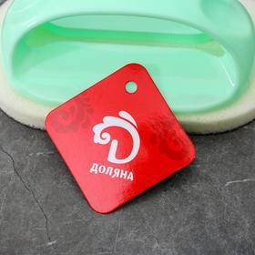 Щётка абразивная с пластиковым держателем Доляна, 8,5×7×14 см - фото 4646232