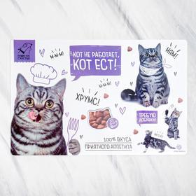 Коврик под миску «Кот не работает, кот ест!», 43х28см