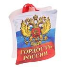 Пакет открытка с тиснением «Гордость России», S 12 х 15 х 5,5 см