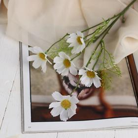 Цветы искусственные 'Космея Эвери' 6,5х48 см, белый Ош