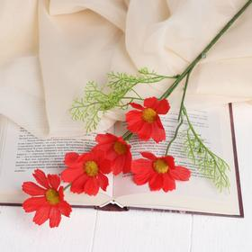 Цветы искусственные 'Космея Эвери' 6,5х48 см, красный Ош