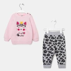 Комплект для девочки, цвет розовый/серый, рост 80 см (12 мес.)
