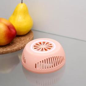Поглотитель запаха для холодильника 10,5×4 см, цвет МИКС