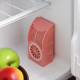 Поглотитель запаха для холодильника, цвет МИКС