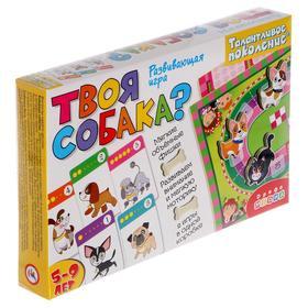 Настольная игра «Твоя собака?»