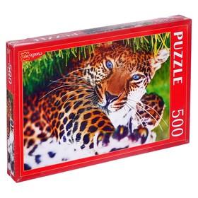 Пазлы 500 элементов «Леопард на траве»