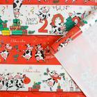 "Glossy packaging paper ""Veselushki"", 70 × 100 cm"