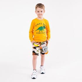 Свитшот для мальчика, цвет жёлтый/дино, рост 104 см