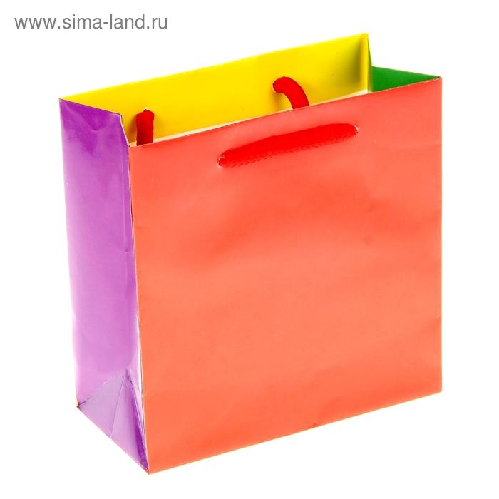 """Пакет подарочный """"Цветной"""""""