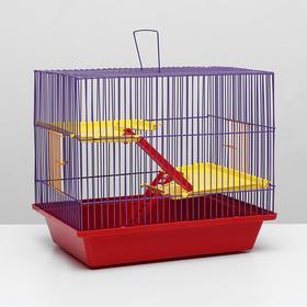 """Клетка для грызунов """"Гризли 3"""" пластик.полки, 41 х 30 х 36 см, красный/фиолетовый"""