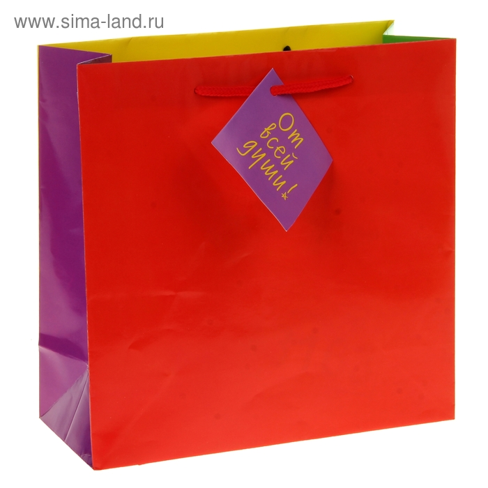 """Пакет подарочный """"Цветной От всей души"""""""