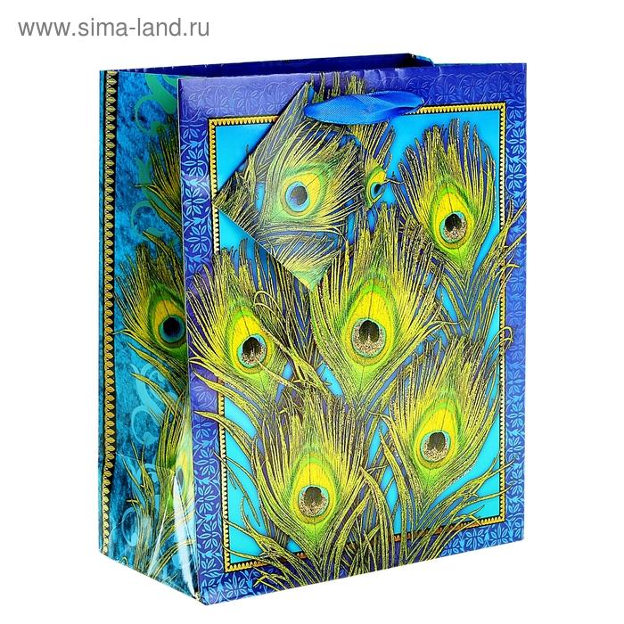 Пакет ламинат вертикальный с блёстками «Перья», 26 х 32 см