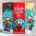 Подарочный набор «С Новым годом»: новогодний шар, шоколад 85 г х 2 шт.