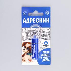 Адресник для вложения записки широкий, капсула 5,2 х 1,4 см, цвет синий