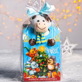 Сладкий детский подарок «Чудес»: мягкая игрушка, конфеты 500 г