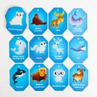 Карточки на кольце для изучения английского языка «Животные полюсов», 3+ - фото 105947697