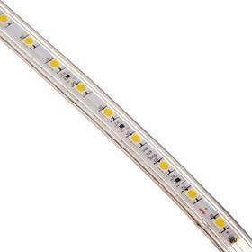 Светодиодная лента Ecola, 220В, SMD5050, 100 м, IP68, 14.4Вт/м, 60 LED/м, 14x7 мм, 4200К