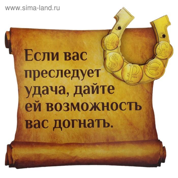 """Магнит денежный """"Если вас преследует удача"""""""